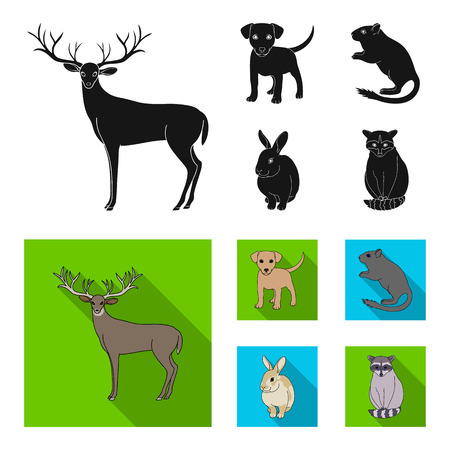 Puppy, rodent, rabbit and other animal species.Animals set collection icons in black, flat style vector symbol stock illustration web. Illustration