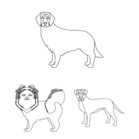 Dog breeds outline icons in set collection for design.Dog pet vector symbol stock web illustration.