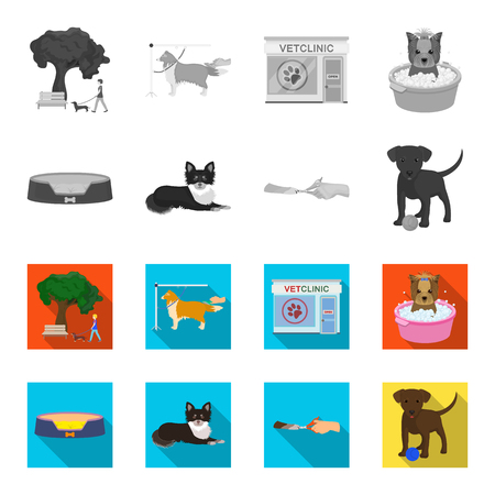 Vet clinic and pet care set collection icons