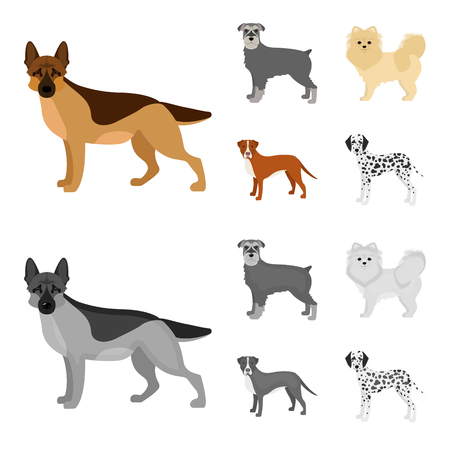 Dog breeds cartoon,monochrome icons in set collection for design.Dog pet vector symbol stock  illustration.