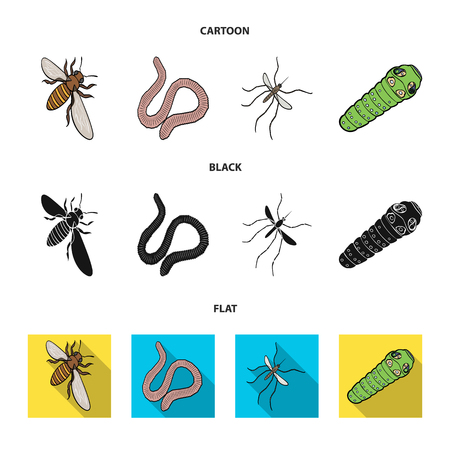 Arthropods insect mosquito, bee.Earth worm, caterpillar,vermicular set collection icons in cartoon,black,flat style vector symbol stock isometric illustration web.