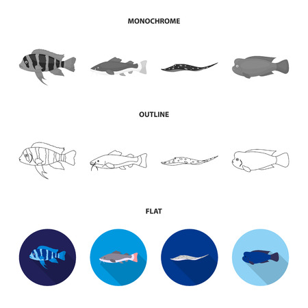 Frontosa, cichlid, phractocephalus hemioliopterus.Fish set collection icons in flat,outline,monochrome style vector symbol stock illustration web. Illustration