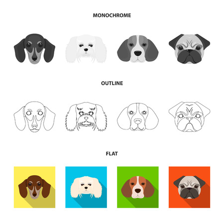 Dog breed of dachshund, lapdog, beagle, pug set collection icons in flat,outline,monochrome style vector symbol stock illustration .