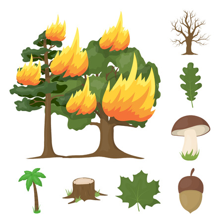 Forest and nature cartoon icons in set collection