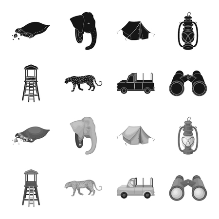 African safari set collection icons