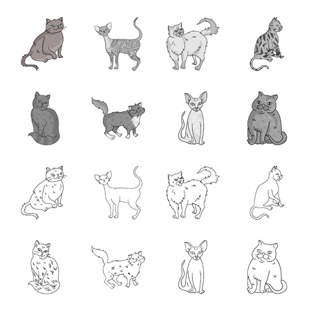 Sphinx, nibelung,norwegian forest cat and other species. Cat breeds set collection icons in outline,monochrome style vector symbol stock illustration . Illustration