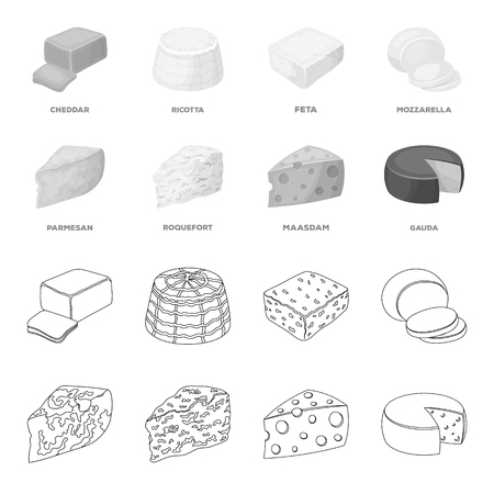 Parmesan, roquefort, maasdam, gauda.Different types of cheese set collection icons in outline,monochrome style vector symbol stock illustration .