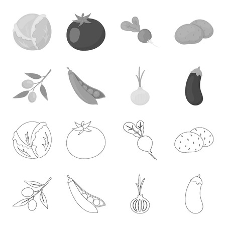 Olives on a branch, peas, onions, eggplant. Vegetables set collection icons in outline,monochrome style vector symbol stock illustration .