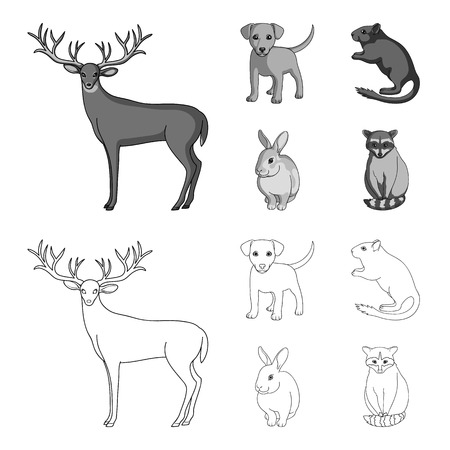 Puppy, rodent, rabbit and other animal species.Animals set collection icons in outline,monochrome style vector symbol stock illustration web.