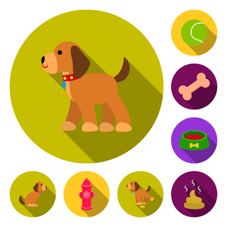 Pet dog flat icons in set collection for design. Caring for the puppy vector symbol stock  illustration.