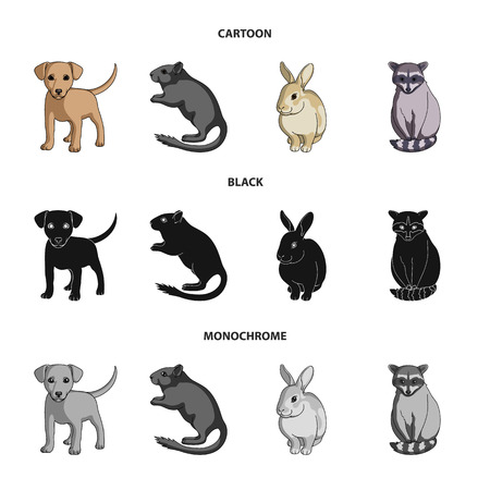 Puppy, rodent, rabbit and other animal species.Animals set collection icons in cartoon,black,monochrome style  symbol stock illustration web.