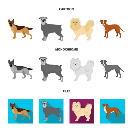 Dog breeds cartoon,flat,monochrome icons in set collection for design.Dog pet vector symbol stock  illustration.