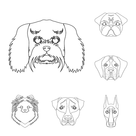Dog breeds outline icons in set collection for design.Muzzle of a dog vector symbol stock web illustration.