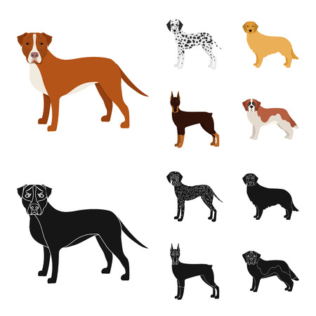 Dog breeds cartoon,black icons in set collection for design.Dog pet vector symbol stock web illustration.