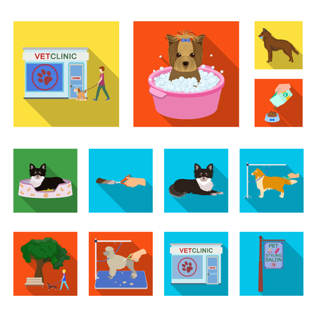 Pet flat icons in set collection for design. Care and education vector symbol stock web illustration. Illustration