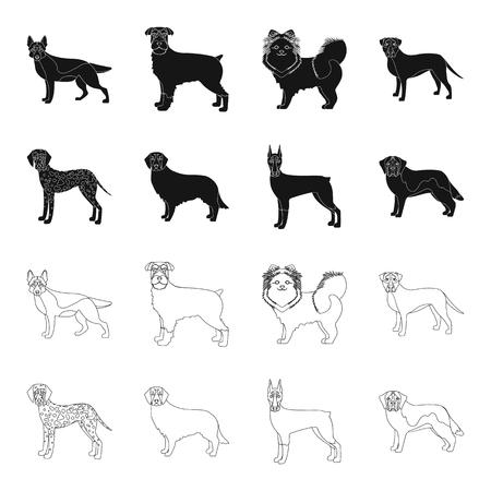 Dog breeds black,outline icons in set collection for design.Dog pet vector symbol stock web illustration.