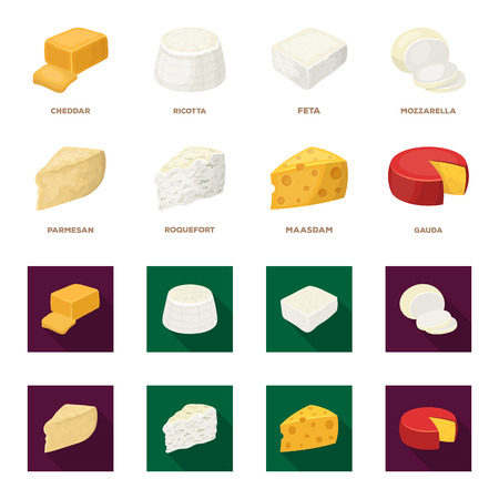 Parmesan, roquefort, maasdam, gauda.Different types of cheese set collection icons in cartoon,flat style vector symbol stock illustration web. Stock fotó - 101702798