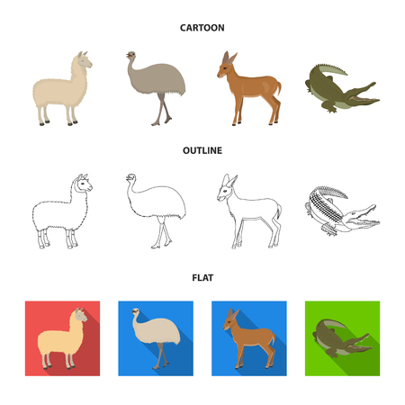 lama, ostrich emu, young antelope, animal crocodile. Wild animal, bird, reptile set collection icons in cartoon,outline,flat style vector symbol stock illustration web.