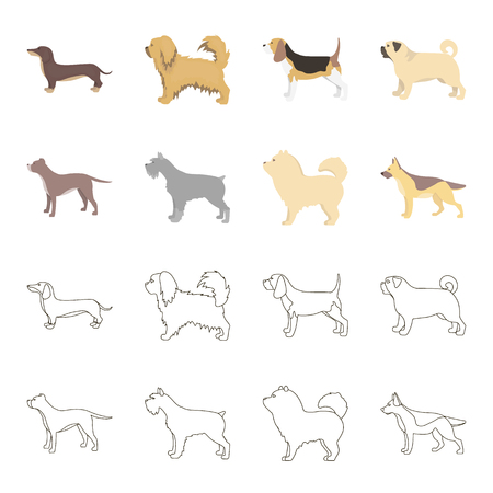 Pit bull, german shepherd, chow chow, schnauzer. Dog breeds set collection icons in cartoon,outline style vector symbol stock illustration web.