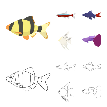 Angelfish, common, barbus, neon.Fish set collection icons in cartoon,outline style vector symbol stock illustration web.
