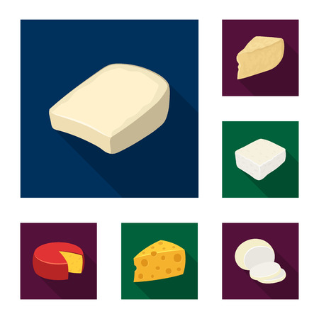 Different kind of cheese flat icons in set collection for design.Milk product cheese vector symbol stock web illustration. Иллюстрация