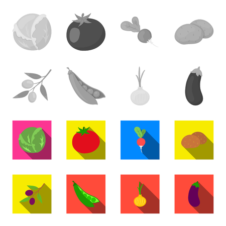 Olives on a branch, peas, onions, eggplant. Vegetables set collection icons in monochrome,flat style vector symbol stock illustration web.