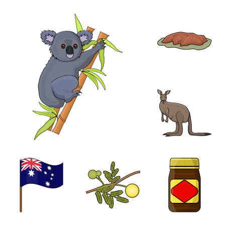 Country Australia cartoon icons in set collection for design.Travel and attractions vector symbol stock  illustration.