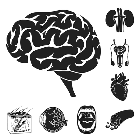 Internal organs of a human black icons in set collection for design. Anatomy and medicine vector symbol stock web illustration. 矢量图像