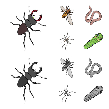 Arthropods insect mosquito, bee.Earth worm, caterpillar,vermicular set collection icons in cartoon,monochrome style vector symbol stock isometric illustration web.