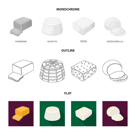 Mozzarella, feta, cheddar, ricotta.Different types of cheese set collection icons in flat,outline,monochrome style vector symbol stock illustration web. Иллюстрация
