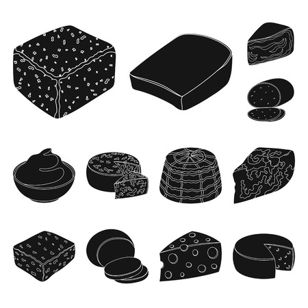 Different kind of cheese black icons in set collection for design.Milk product cheese vector symbol stock  illustration.