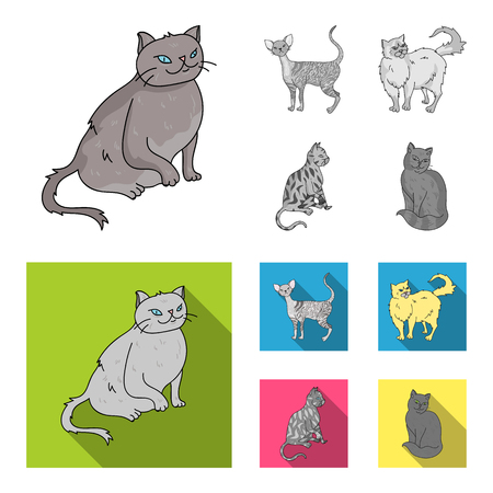 Persian, Cornish rex and other species. Cat breeds set collection icons in monochrome,flat style vector symbol stock illustration web.