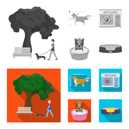 Walking with a dog in the park, combing a dog, a veterinarian office, bathing a pet. Vet clinic and pet care set collection icons in monochrome,flat style vector symbol stock illustration web.