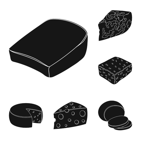 Different kind of cheese black icons in set collection for design.Milk product cheese vector symbol stock web illustration.