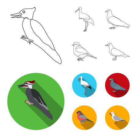 Woodpecker, stork and others. Birds set collection icons in outline,flat style vector symbol stock illustration web. Illustration