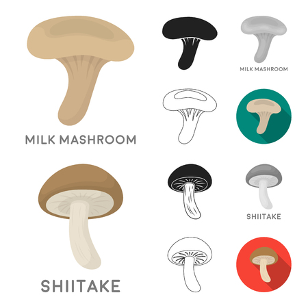 Poisonous and edible mushroom cartoon,black,flat,monochrome,outline icons in set collection for design. Different types of mushrooms vector symbol stock  illustration.