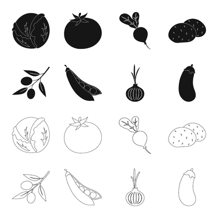 Olives on a branch, peas, onions, eggplant. Vegetables set collection icons in black,outline style vector symbol stock illustration web.