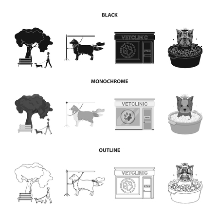 Walking with a dog in the park, combing a dog, a veterinarians office, bathing a pet. Vet clinic and pet care set collection icons in black,monochrome,outline style vector symbol stock illustration web.