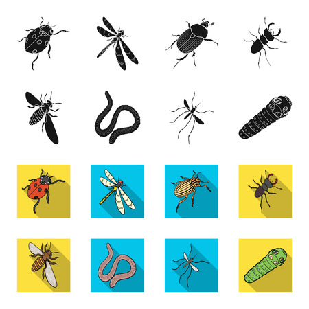 Arthropods insect mosquito, bee.Earth worm, caterpillar,vermicular set collection icons in black,flet style vector symbol stock isometric illustration web. 일러스트