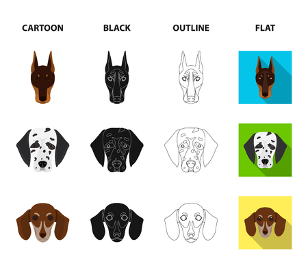Muzzle of different breeds of dogs.Dog of the breed St. Bernard, golden retriever, Doberman, Dalmatian set collection icons in cartoon,black,outline,flat style vector symbol stock illustration web. Illustration