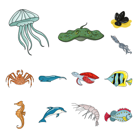 A variety of marine animals cartoon icons in set collection for design. Fish and shellfish vector symbol stock  illustration. Illustration