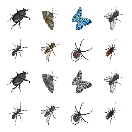 An insect arthropod, an osa, a spider, a cockroach. Insects set collection icons in cartoon,monochrome style vector symbol stock isometric illustration . Illustration