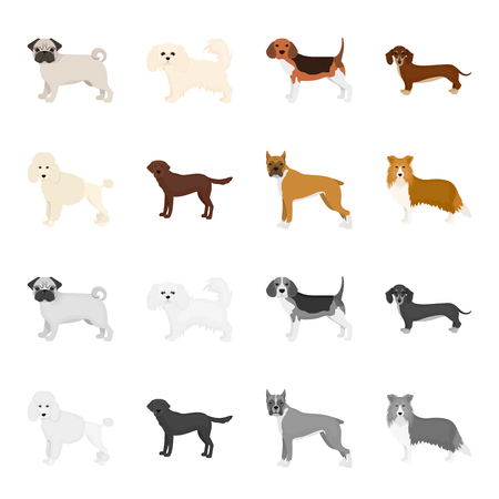 Dog breeds cartoon,monochrome icons in set collection for design.Dog pet vector symbol stock web illustration.