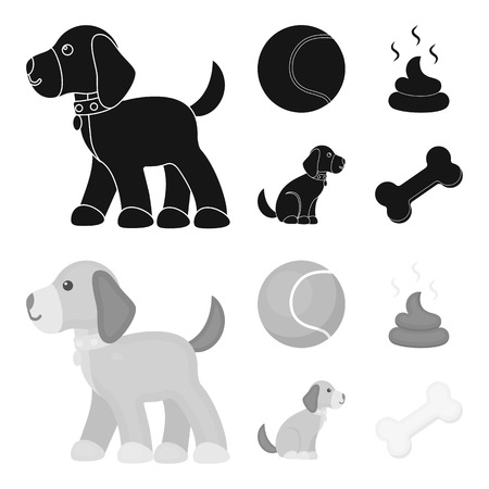 Dog sitting, dog standing, tennis ball, feces. Dog set collection icons in black,monochrome style vector symbol stock illustration .