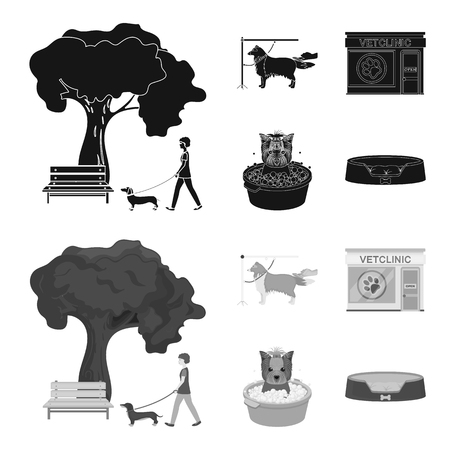Walking with a dog in the park, combing a dog, a veterinarian office, bathing a pet. Vet clinic and pet care set collection icons in black,monochrome style vector symbol stock illustration . Vettoriali