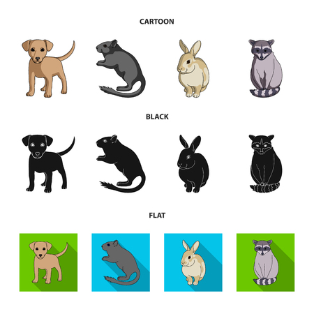 Puppy, rodent, rabbit and other animal species.Animals set collection icons in cartoon,black,flat style vector symbol stock illustration . Illustration
