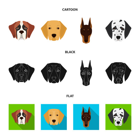 Muzzle of different breeds of dogs.Dog of the breed St. Bernard, golden retriever, Doberman, Dalmatian set collection icons in cartoon,black,flat style vector symbol stock illustration . Illustration