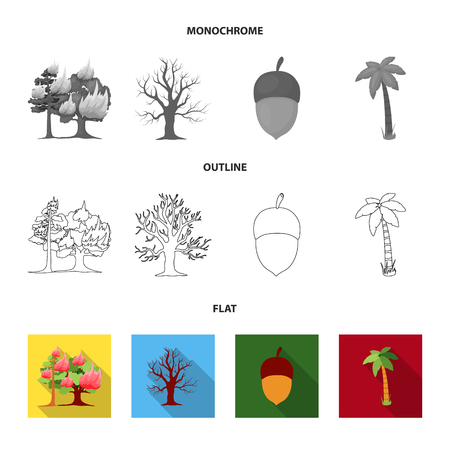 Burning tree, palm, acorn, dry tree.Forest set collection icons in flat,outline,monochrome style vector symbol stock illustration . 일러스트