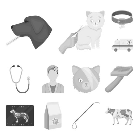 Veterinary clinic monochrome icons in set collection for design. Treatment of a pet vector symbol stock  illustration.
