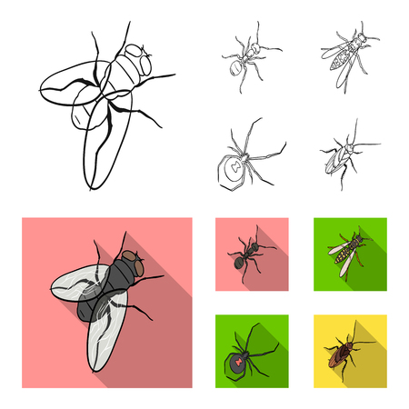 An insect arthropod, an osa, a spider, a cockroach. Insects set collection icons in outline,flat style vector symbol stock isometric illustration web. Illustration